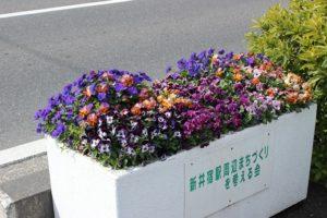花のプランター