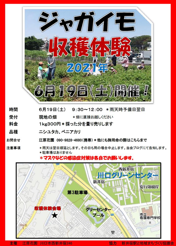 ジャガイモ収穫体験2021
